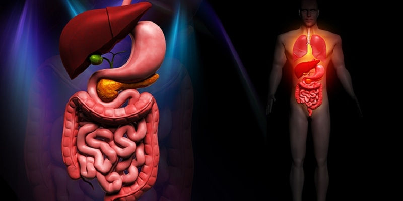 Journal of Gastroenterology and its Complications