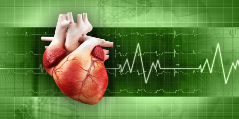 Clinical and Experimental Research in Cardiology