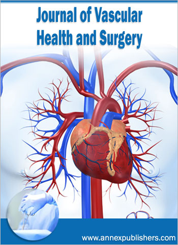 Journal of Vascular Health and Surgery